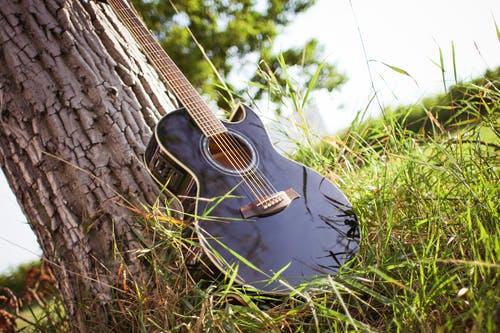 Guitare classique ou guitare électrique : le match n'aura pas lieu